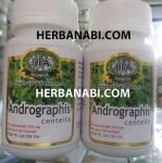 Andrographis Centella hepato protector