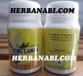 Kapsul Temulawak Herbal Insani