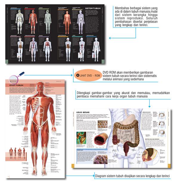 jual ensiklopedia tubuh manusia