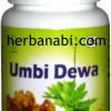 Umbi Dewa