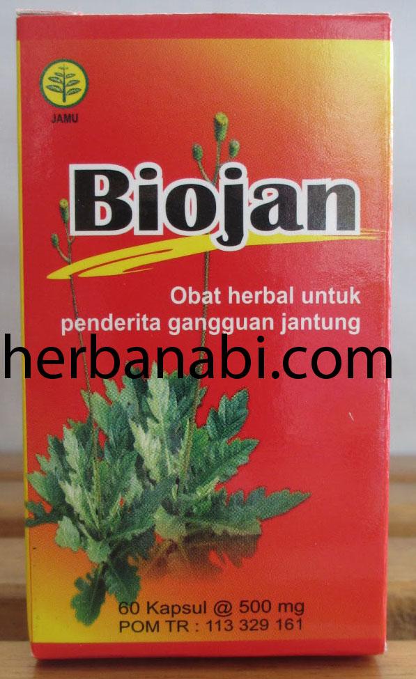herbal untuk sakit jantung surabaya