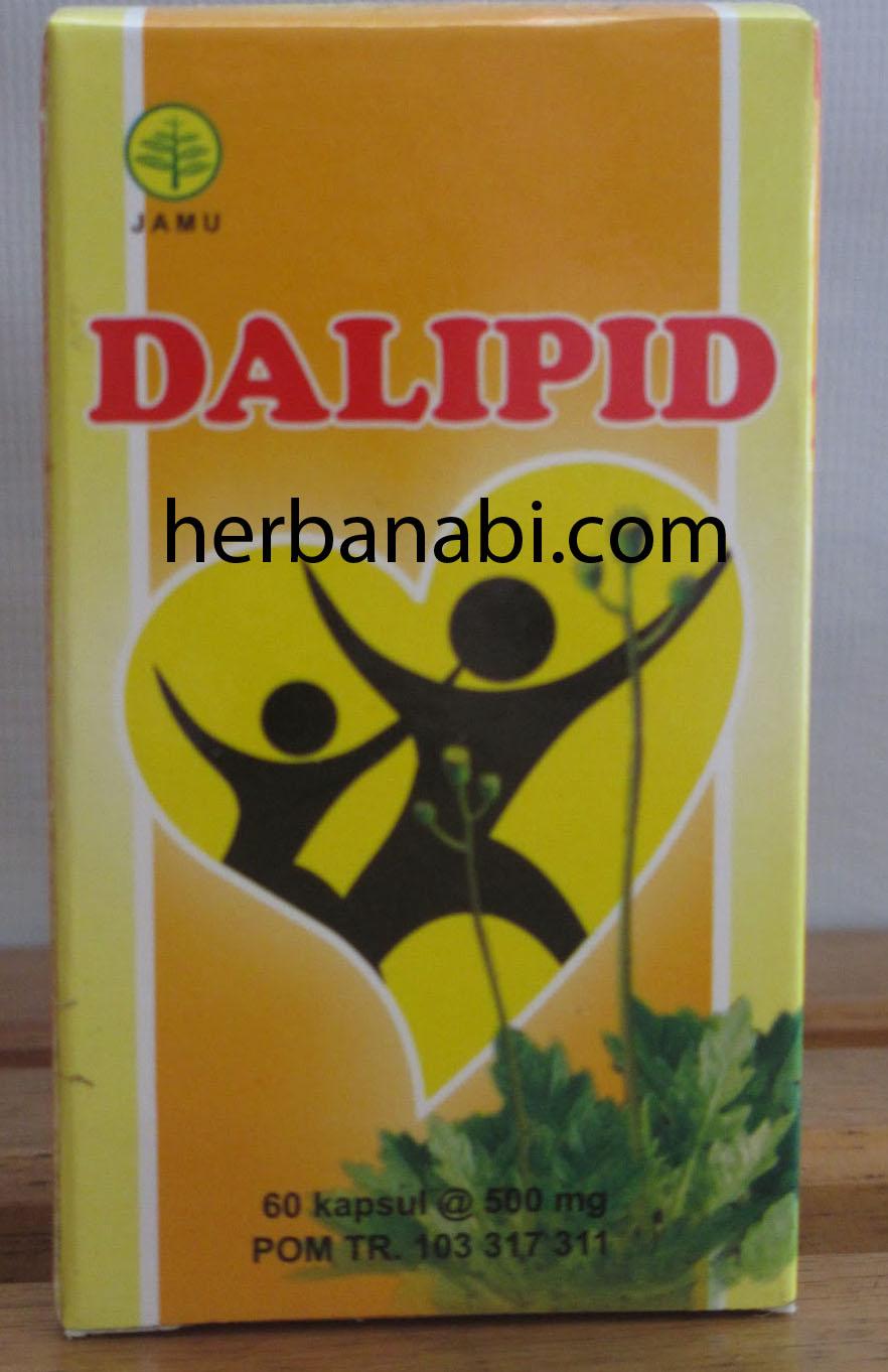 jual herbal untuk kolesterol tinggi - dalipid