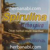 Spirulina Herbal Insani Surabaya