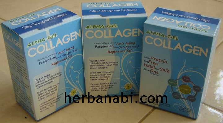 Jual Susu Collagen