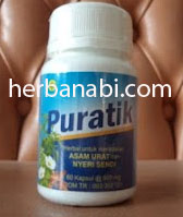 Puratik Obat Herbal Untuk ASam Urat