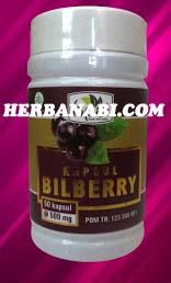 jual kapsul bilberry hpai surabaya