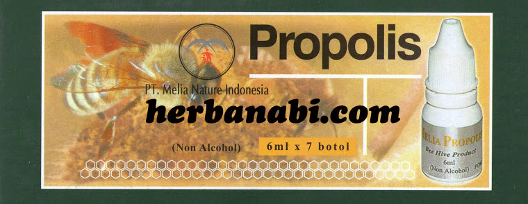 PROPOLIS MELIA NATURE INDONESIA MURAH