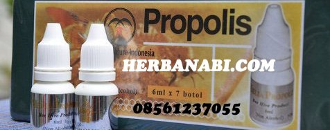 PROPOLIS MELIA SURABAYA MURAH