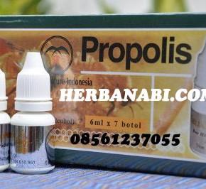 Grosir Propolis Melia Nature Surabaya
