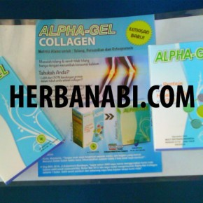 JUAL ALPHA GEL COLLAGEN SURABAYA