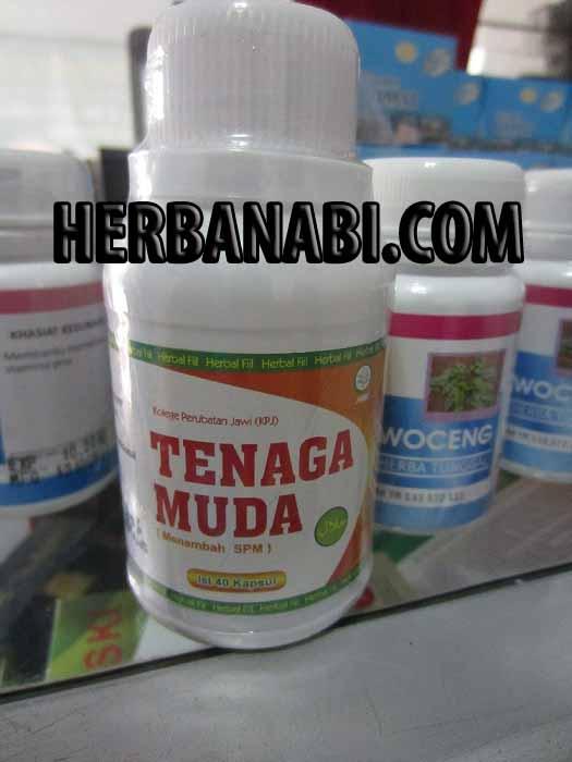 TENAGA MUDA