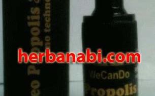 grosir neo propolis exist murah asli