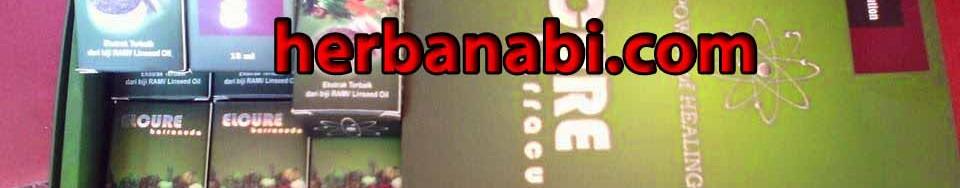 grosir elcure barracuda murah surabaya