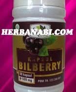 jual kapsul bilberry murah surabaya