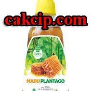 Madu Plantago HPAI surabaya Sidoarjo