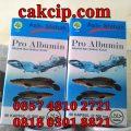 Pro Albumin Ekstrak Ikan Kutuk / Ikan Gabus
