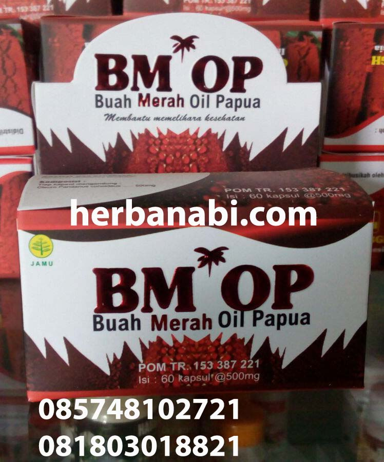 jual buah merah oil papua bmop griya annur