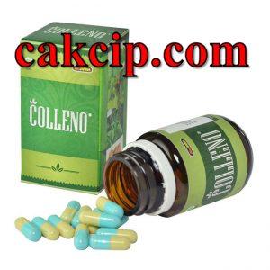 Jual Jamu obat herbal kolesterol terbaik
