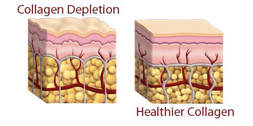 jual kolagen untuk kulit murah