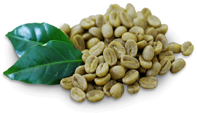 produsen Green coffee Indonesia Murah
