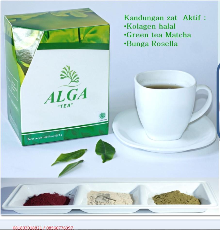 Alga Tea Kolagen Teh Hijau Green Tea + Daun Rosella Obat ...