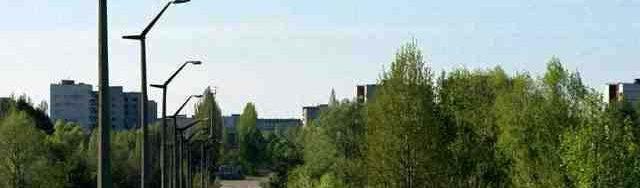 Tanaman pohon tumbuhan di kota chernobyl