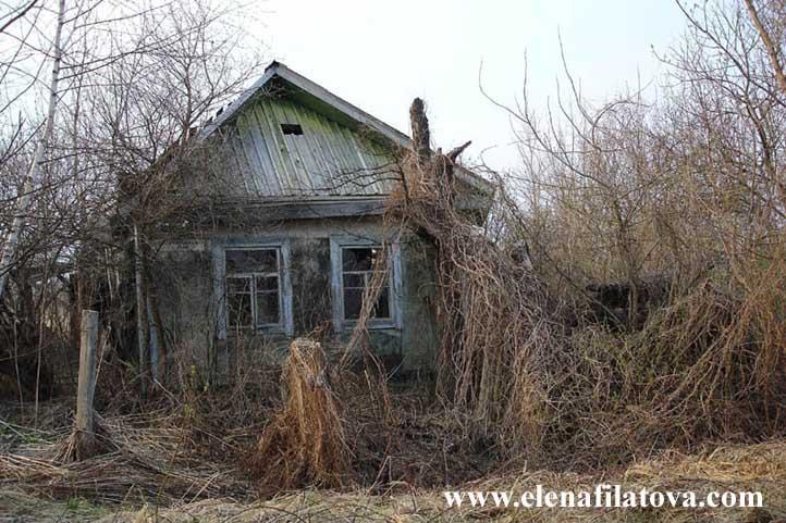 efek radiasi nuklir chernobyl