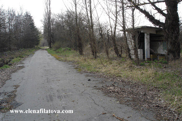 foto korban bencana chernobyl