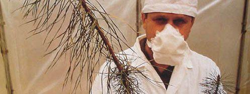misteri ledakan nuklir chernobyl