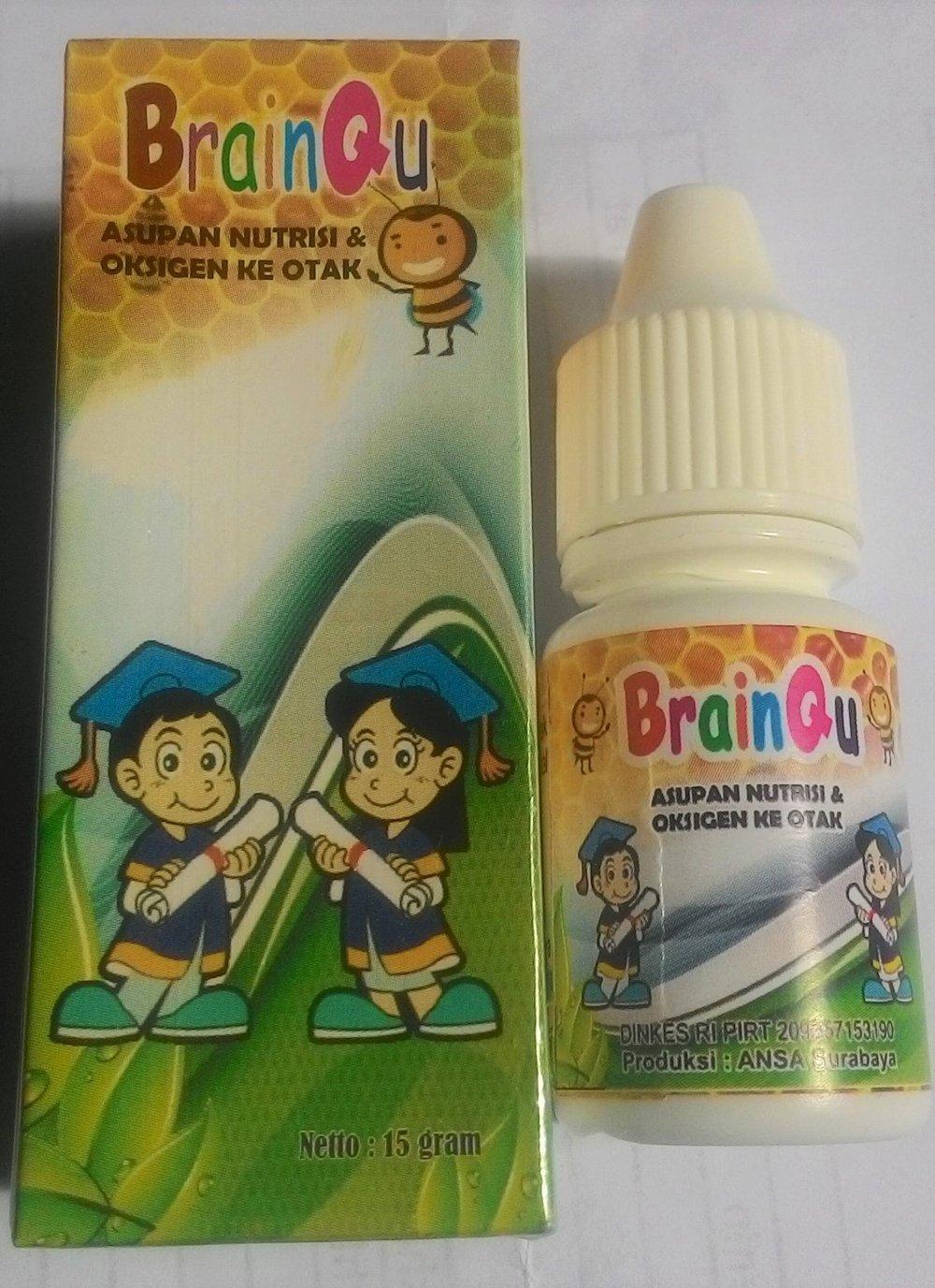 brainqu surabaya
