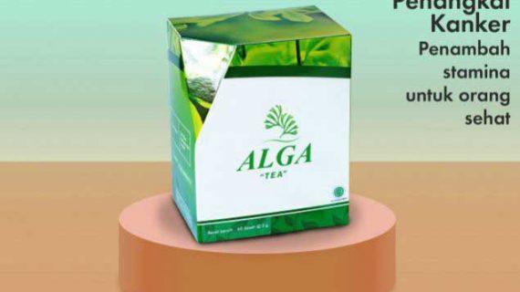 obat-kanker-alga-tea