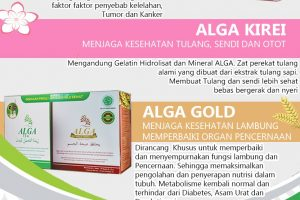 AGAT AKAT (Paket Hemat Alga Gold + Alga Tea + Alga Kirei)