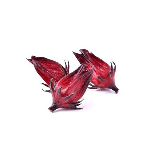 roselle-flower.png